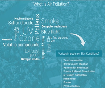 Impact of Air-pollution on Skin
