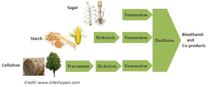 Bioethanol Production from Biomass